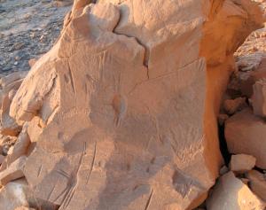 Arañas rupestres en Jarga, Egipto